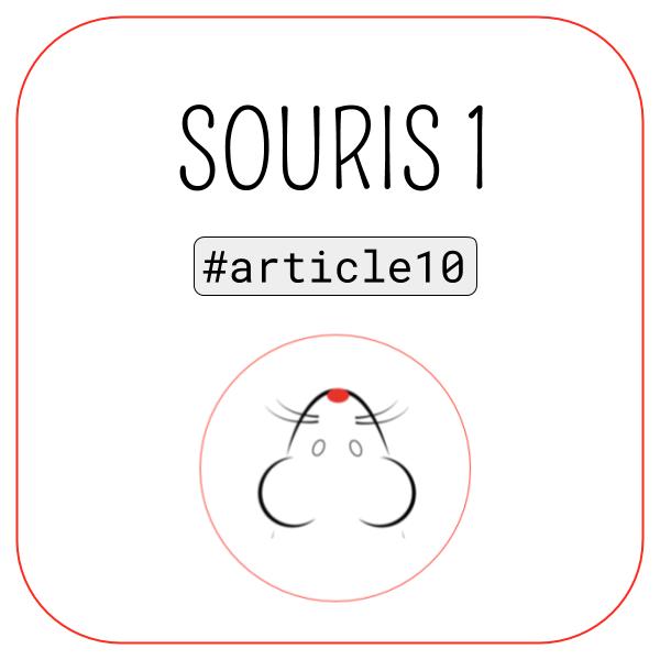 Article Souris 1 Article 10 | Blog 1000&1 Click Agence de Référencement Naturel